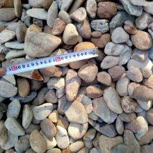 污水处理鹅卵石 污水净化英德石 过滤石材 园林绿化鹅卵石 天然杂色过滤石