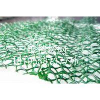 怀柔边坡绿化三维植被网大量现货