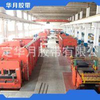 长期供应 NN100输送带 优质尼龙输送带生产线