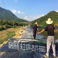 广东佛山珠海增城中山 农村养殖沼气池 黑膜沼气池建设