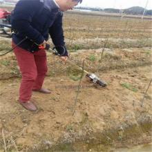 果园农田背负式旋耕机 家用小型锄草机 邦腾汽油割草机