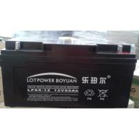 乐珀尔LOTPOWER蓄电池12V-100 潍坊总代理现货报价