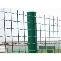 铁丝网 养殖围网 养鸡护栏 圈山网 厂家直销