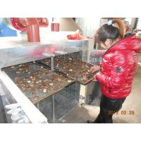 专业制作蘑菇、木耳食用菌干燥设备