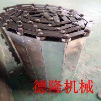 德隆 烘干机清洗机输送机链板 304不锈钢 链条厂家 果蔬加工网链