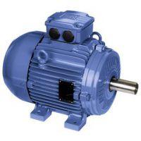 原装进口WEG低压控制器