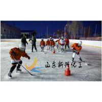 专业生产冰球场围栏A 曲棍球场围栏 A标准冰球场围栏