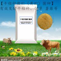 【干秸秆微贮(黄贮)菌种】厂家直销 微生物菌剂