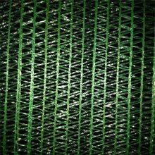 单层建筑密目网 盖土网扁丝拉丝材料 盖土网2针图片