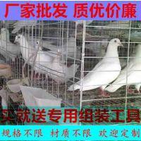 新疆养殖场4层16位钢丝镀锌肉鸽养殖笼具兴博厂家特价促销鸽子笼