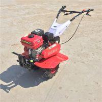 小型旋耕机价格 葡萄园松土旋耕机
