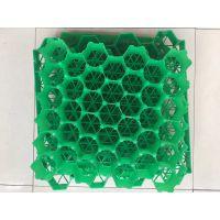 供应植草格/停车场专用塑料植草格/HPDE塑料板