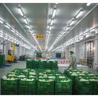 北京大型集装箱车冷库安装设计价格