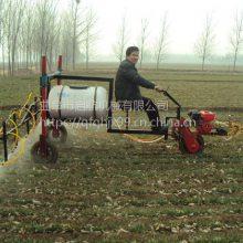 三轮汽油自走喷药机厂家 玉米地蔬菜杀虫喷雾器 汽油高压打药机