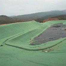 透水不透土300克绿色土工布 山东华龙涤纶土工布厂家