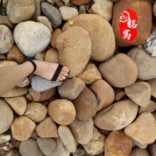 广东鹅卵石 变压站防震石 优质英德石 装饰污水过滤石 厂家供应鹅卵石