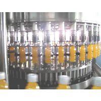 力得利推荐新款 全自动果汁颗粒大瓶装灌装机