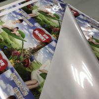 pp纸户内外可用写真画 防水防嗮耐用时间长上海的工厂价格质量有优势速来采购户外背胶280克