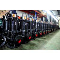 供应WQ25-8-12-0.75潜水排污泵WQ25-8-22-1.5自吸排污泵