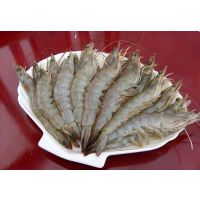 厄瓜多尔白虾价格 熟冻南美对虾价格