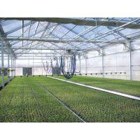 陕西杨凌大型农业物联网温室绿色生态、全自动调节操作方便