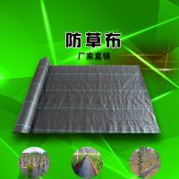 厂家直销土工布、土工膜、防草布、植生毯、复合土工膜、