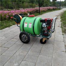 生产直销园林绿化杀虫喷药车小区车库灭蚊喷雾器药箱式远射程喷洒机