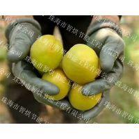 低碳节电节能智烘牌杏子干燥机系统,烘干技巧应用广泛的杏子烘干机ZH-JN-HGJ03