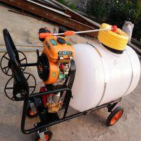 喷雾器 大棚种植推车式打药机 养殖场消毒喷药机