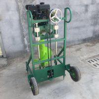 二冲程推车式打坑机价格 便携式种树机 埋藤栽柱挖坑机厂家