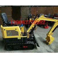 天德立 TDLW-10履带式小型挖掘机 挖土机