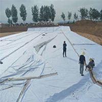 500g/m2两布一膜在山东公路沉降段的应用