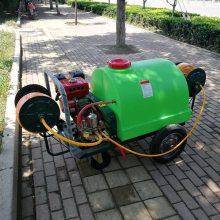 供应园林绿化杀虫喷雾器推车汽油打药车公共场所消毒灭菌机