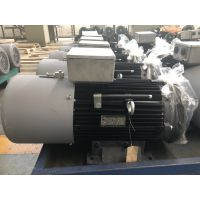Y2EJ系列起重升降机专用电机