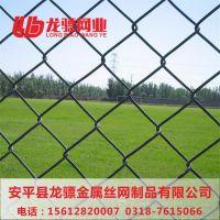 体育场护栏网图片 佛山球场围栏 球场围网铺设