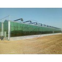 连栋玻璃智能温室大棚承建价格——青州瀚洋生态温室厂家