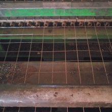 沈阳0.914米、1米、1.2米宽国标镀锌电焊网一卷报价【50卷起订】