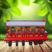 潍坊生菜香菜施肥播种机 启航牌桔梗高粱播种机 芝麻小颗粒精播机价格