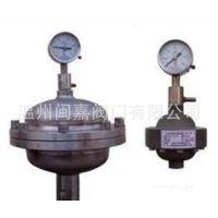 膜片式脉动阻尼器 32mm 1L 计量泵附件 隔膜式脉冲阻尼器 阻尼器