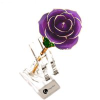 黛雅精美24K镀金玫瑰花紫色纯色唯美定制款 七夕礼物厂家批发