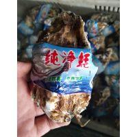 武汉华南生蚝批发 鲜活生蚝多少钱一斤