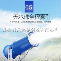 联民供应除尘环保雾炮机 30米全自动喷雾机 长期批发
