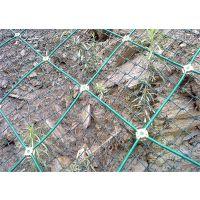 边坡防护网多少钱一米|边坡防护网价格|圈山网|赵发丝网