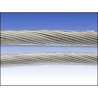 供应优质进口钢丝绳,韩国钢丝绳,大象钢丝绳