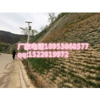 文山三维植被网生产(股份有限公司欢迎您)