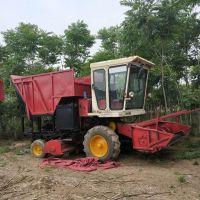 厂家直销大型自走式秸秆青储机 皇竹草回收机 牛羊饲料收集机