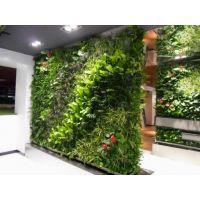 厦门仿真植物墙专业厂家设计制作施工安装