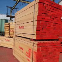 最新到港优质德国榉木直边板 齐边 中短料 榉木板材 地板楼梯材 家居装饰木材 进口木材