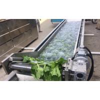 山东华钢毛辊式果蔬清洗风干机,全自动变频的蔬菜清洗杀青设备