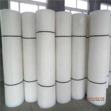 生产塑料平网 养鸡塑料网 供应塑胶网片